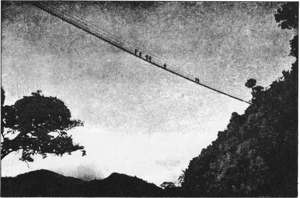 formosan_rope_bridge