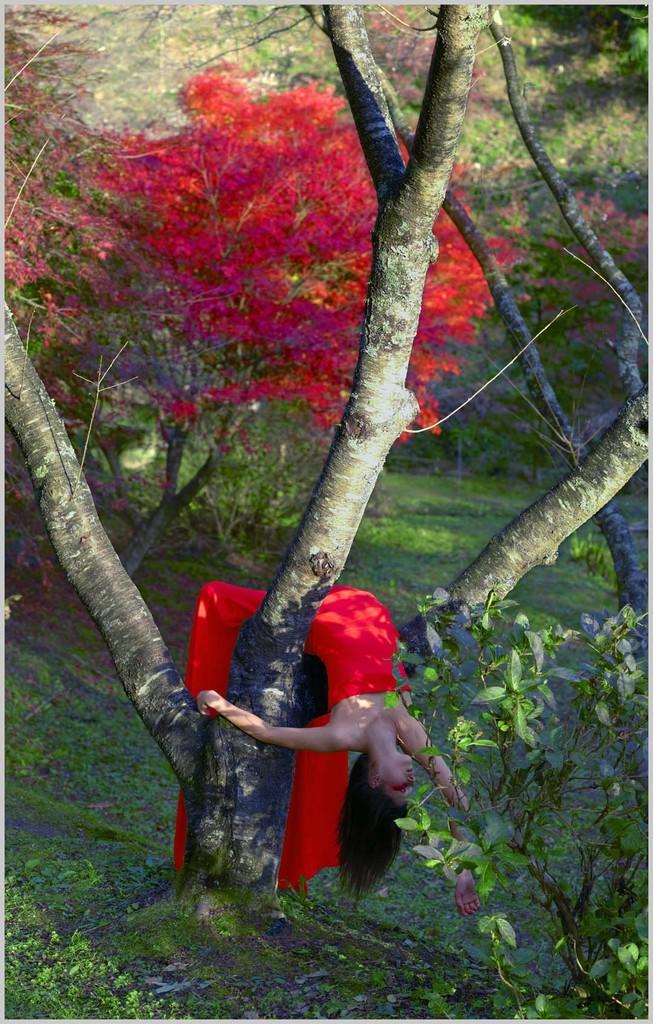 Izima Kaoru, #512, «Angela Reynolds wears Valentino», 2011,