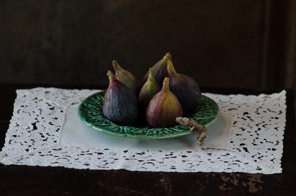 Summer Figs ©Catherine Andrako